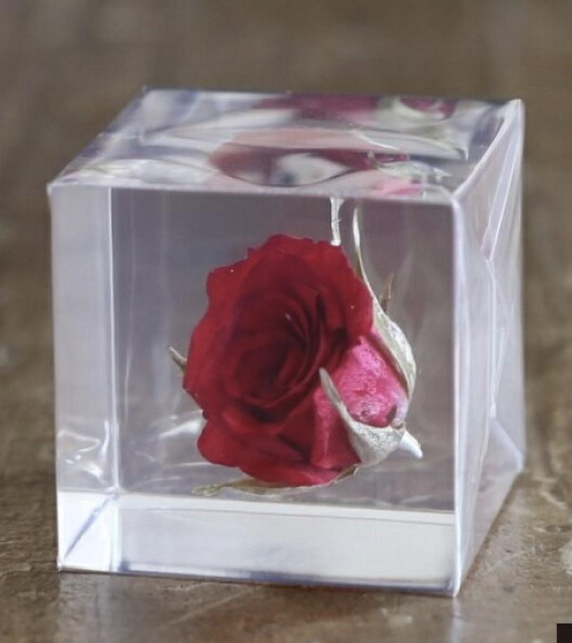 母の日に:1つずつ増える『Sola cube』